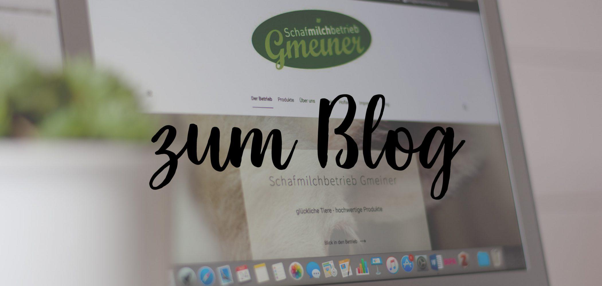 zum blog1